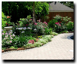 Superior A Division Of Stewart Land Designs Is Pleased To Provide A Comprehensive  Line Of Services To Better The Health And Curb Appeal Of Your Lawn And  Shrubs.